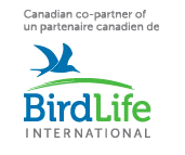 Birdlife International Logo